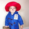 Photo #1 - Ace the Paddington Bear