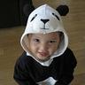 Photo #1 - Panda Bear