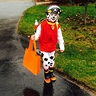 Photo #3 - Paw Patrol Marshall Costume