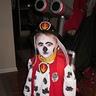 Photo #1 - Paw Patrol Marshall