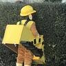Photo #3 - Pushing down the bush!