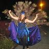 Photo #10 - Peacock