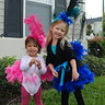 Photo #1 - Peacock and Flamingo sisters