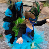 Photo #4 - Peacock takes flight