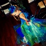 Photo #3 - Peacock Princess