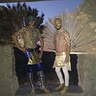 Photo #1 - Desert peacocks
