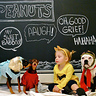 Photo #2 - Everyone Loves the PEANUTS!