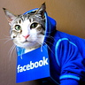 Photo #2 - Facebook Hoodie