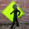 Photo #2 - Pedestrian Crossing Sign