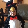 Photo #1 - Baby Andrew the Penguin