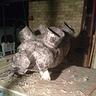 Photo #4 - paper mache pig