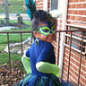 Photo #3 - Peacock costume