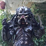 Photo #8 - Pint-sized Predator