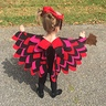 Photo #2 - Beautiful Owlette Wings