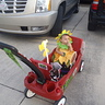Photo #3 - Sunflower in the wagon