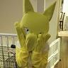 Photo #2 - Pokemon Hypno