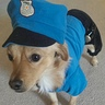 Photo #2 - Police Officer