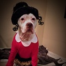 Photo #2 - Olive Oyl and her portrait