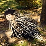 Photo #1 - Porcupine