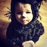 Photo #3 - Porcupine