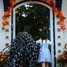 Photo #2 - Peeking Inside The Neighbor's House (Trick or Treat)
