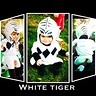 Photo #10 - White Power Ranger