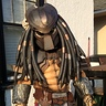 Photo #2 - Predator