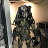 Photo #3 - Predator