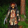 Photo #4 - Predator's Woods