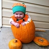Photo #4 - Pumpkin