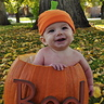 Photo #1 - Pumpkins are way better than clothes!