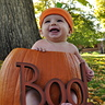 Photo #2 - lil punkin!