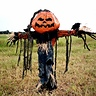 Photo #1 - Pumpkin Patch Scarecrow
