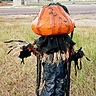 Photo #2 - Pumpkin Patch Scarecrow