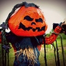 Photo #3 - Pumpkin Patch Scarecrow