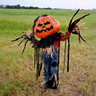 Photo #4 - Pumpkin Patch Scarecrow