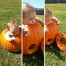 Photo #2 - PumpKINZ