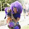 Photo #1 - Purple Minion (Simona & Sherlock)