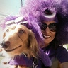 Photo #2 - Purple Minions