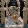 Photo #3 - Queen Elsa from Frozen in her Ice Palace
