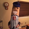 Photo #4 - Racing Sausage