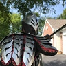Photo #6 - Real Steel Gothic Knight