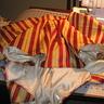 Photo #5 - overskirt