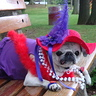 Photo #1 - Leah,  Red Hat Society