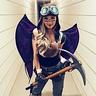 Photo #1 - Renegade Raider
