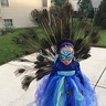 Photo #2 - Runway Peacock