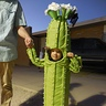 Photo #1 - Saguaro Cactus