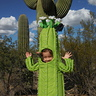 Photo #2 - Saguaro Cactus