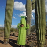 Photo #6 - Saguaro Cactus