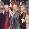 Photo #1 - Just a bunch of Hocus Pocus